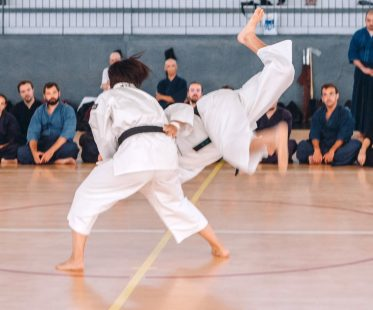 Art Martial – Shorinji Kempo