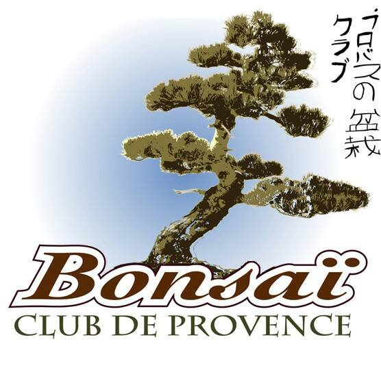 Expo Bonsaï Club de Provence